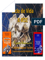 07 ROI vs. Ciclo de vida.pdf
