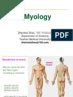 6.Myology20140330-1