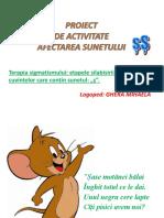 0_terapia_sigmatismului_sunetul_s.pptx