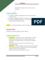 Célula (resumos).docx