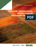 ciencia_tecnologia_indigena_ebook.pdf