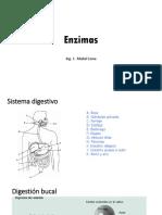 enzimas 1