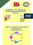 Elementos de Gestion de Un Programa de Seguridad & Salud