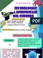 Ana Lilia Cuevas Ecologia Aceptada