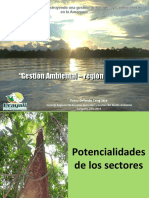 san_martin_ucayali_gestion_ambiental.pdf
