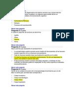 docdownloader.com_parcial-neuropsicologia.pdf