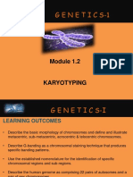 2. Karyotyping