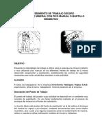 PROCEDIMIENTO DE TRABAJO SEGURO PICADOR.docx