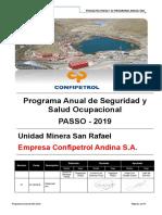 PASSO 2019 - CONFIPETROL ANDINA S.A. (1).DOCX