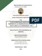 TESIS CONDORI JURADO (1).pdf