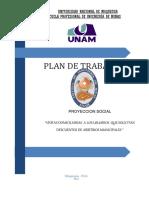 Plan de Proyeccion Social joan arpita.docx