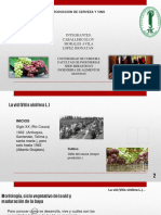 Exposicion de Materias (1) (Wecompress.com)
