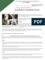 Así Es El Ciclo de Vida Productivo y Reproductivo de Una Hembra Bovina _ CONtexto Ganadero _ Noticias Principales Sobre Ganadería y Agricultura en Colombia