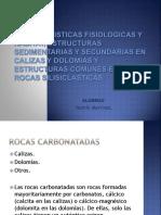 caracteristicasfisiologicasdecalizasydolomita-160913023958