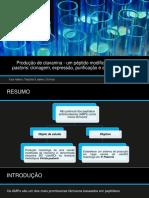 Produção de clavanina - um péptido modificado em Pichia pastoris