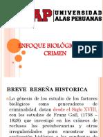 9 ENFOQUE BIOLOGICO DEL CRIMEN (9).pptx