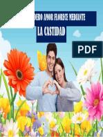 Afiche - La Castidad