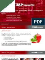 Eia - Expo - Ovm PDF