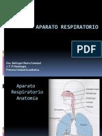 histología - aparato respiratorio