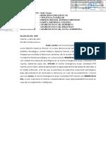 Exp. 00299-2019-0-2505-JM-FC-01 - Resolución - 02122-2019 - casma
