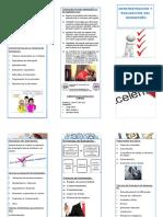 FOLLETO(AEDD).pdf