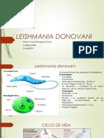 LEISHMANIA DONOVANI.pptx
