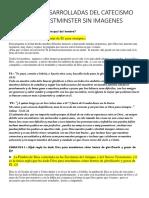 PREGUNTAS DESARROLLADAS 2019.docx