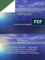 Habilidades perceptivo motrices