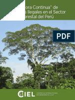 Centro Report v 15
