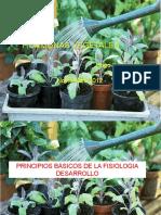 HORMONAS VEGETALES resumen 2013.pptx