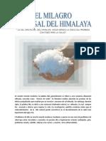 El milagro de la sal del Himalaya