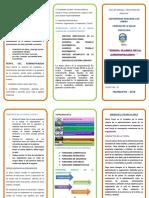 TRIPTICO-ADMINISTRACION.docx