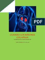 Investigación científica de los riñones.docx