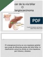 7 Col Angio Carcinoma