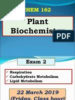 Carbohydrate Metabolism.pdf