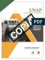 INFORME 03 FISICA II LABORATORIO UNAP PRINCIPIO DE ARQUIMEDES