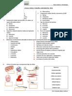 ACTIVIDAD LA CELULA, FORMA, TAMAÑO, COMPONENTES, TIPO.docx