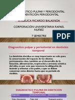 Diagnostico Pulpar y Periodontal en Dentición Periodontal