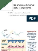 1.9. Del DNA a las proteínas II.pdf