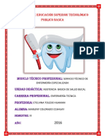 INSTITUTO DE EDUCACIÓN SUPERIOR TECNOLÓGICO PUBLICO NASCA 1.docx