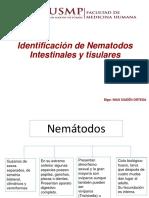 5.Uncinarias Para PDF