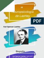 Neuropsicologia de Lashley, Interconductismo de Kantor