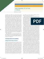 Mechanism of Action Antiepileptic Drug