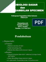 Mikrobiologi Dasar & Specimen