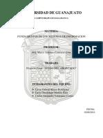 FSI-PF.docx