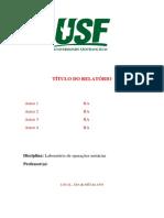Modelo de relatório (3).docx