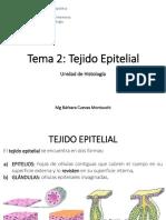 2-tejido-epitelial1