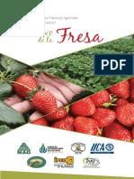 Manual Buenas Practicas Agricolas Fresa