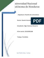 VADEMECUM PASANTIA.docx