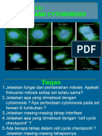 Lect11-Mitosis and Cytokinesis---modified.pptx